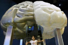 <!--:es-->Neurological disorders affect 1 billion people<!--:-->