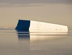 <!--:es-->Cambios biológicos en la Antártida<!--:-->