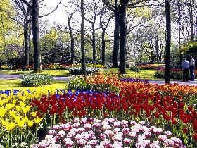 <!--:es-->Doce errores a evitar en tu jardín! . . . Tips para crear un espacio agradable<!--:-->