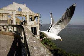 <!--:es-->Alcatraz prison won't be removed for peace centre<!--:-->