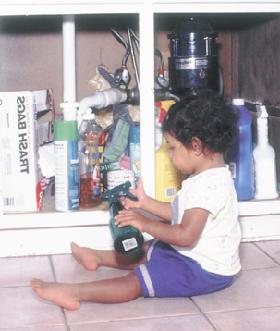 <!--:es-->Mantengamos un Hogar Sano controlando las plagas sin afectar la salud de los niños!<!--:-->