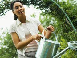 <!--:es-->Un Jardín Donde Cada Gota Cuenta! …Productos que ayudan a ahorrar agua.<!--:-->