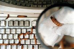 <!--:es-->Alerta mundial por virus …Temen Activación de: 'CONFICKER'<!--:-->