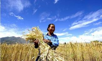 <!--:es-->Predicen sequía catastrófica en China<!--:-->