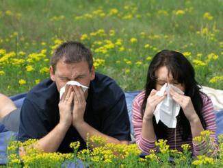 <!--:es-->ALERGIAS Cómo se previene. Cuáles tratamientos pueden aliviar los síntomas.<!--:-->