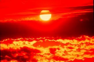 <!--:es-->Hot Weather Precautions<!--:-->