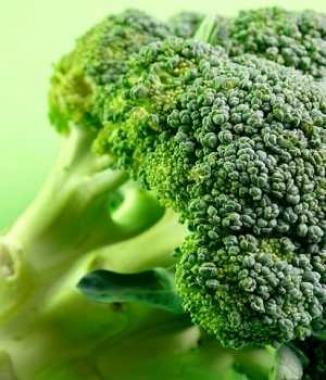 <!--:es-->Crean superbrócoli con muchos nutrientes …Popeye podría contemplar el cambiar de la espinaca al brócoli. Un grupo de científicos británicos produjo una nueva variedad del vegetal que, según los expertos, tiene gran valor nutritivo<!--:-->