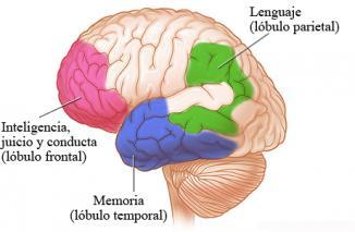 <!--:es-->¿Qué es la enfermedad de Alzheimer? …La enfermedad de Alzheimer es la causa más común de deterioro mental o de demencia. Pero la demencia también tiene muchas otras causas. Para más información, vea el tema Demencia.<!--:-->