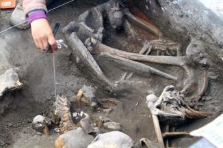 <!--:es-->Hallan cementerio de ocho siglos de antigüedad en México<!--:-->
