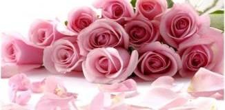 <!--:es-->Feliz Día de las Madres!!!<!--:-->