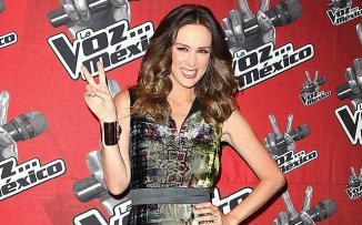 <!--:es-->Los Mejores Chismes de los Espectáculos, sólo en EL LIDER USA                 12 19 2013<!--:-->