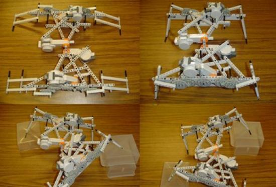 <!--:es-->Los robots cuyos cuerpos crecen como los de seres vivos aprenden a caminar mejor que los de cuerpo fijo<!--:-->