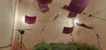 <!--:es-->La pared vegetal, eficaz aislante acústico<!--:-->