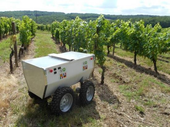 <!--:es-->Un robot ayudará a mejorar la producción vitivinícola<!--:-->