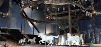 """<!--:es-->""""Oddyseo"""":  El espectáculo más grande del mundo &#8230;Debuta en Frisco a partir del 24 de enero con más de 60 caballos en escena<!--:-->"""