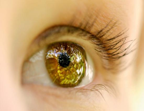 <!--:es-->Regeneran el tejido de la córnea utilizando células madre<!--:-->