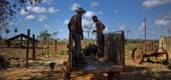 <!--:es-->Ante la crisis alimentaria, Cuba mira hacia Estados Unidos<!--:-->