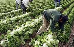 <!--:es-->En Vigor Ley Antiinmigrante …afecta a Indocumentados en Pensilvanya<!--:-->