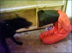 <!--:es-->Pentagon confirms authenticity of abuse photos: official<!--:-->