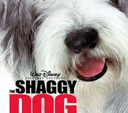 <!--:es-->The Shaggy Dog<!--:-->