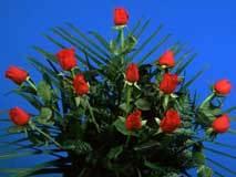 <!--:es-->Feliz Día de Las Madres!<!--:-->
