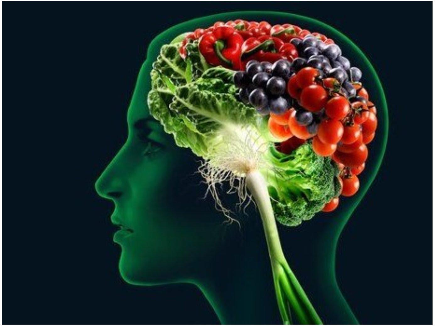 <!--:es-->6 Alimentos que son buenos para la memoria <!--:-->