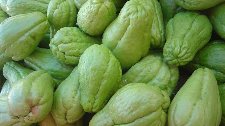Remedio de Chayote para  desaparecer la  diabetes y sanar los riñones de un golpe