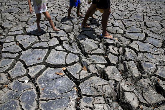 El final de la civilización: ¿cómo puede acabar la vida en la Tierra?