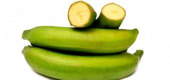 El Plátano verde: paliativo contra el cáncer