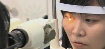 Creía que era una simple infección: le  encontraron 4 abejas dentro del ojo