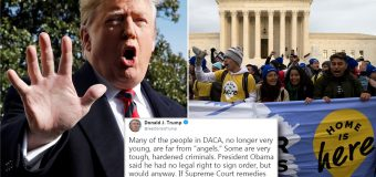 "Donald Trump Says DREAMers Are ""Tough, Hardened  Criminals"" as DACA Case Reaches Supreme Court"