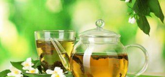 Importancia de la Utilización de  Plantas Medicinales para la Salud