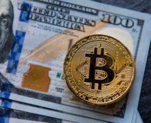 Hermanos adolescentes acusados de cometer una  de las mayores estafas con bitcoins de la historia