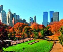 NYC & COMPANY destaca las principales y próximas aperturas en Nueva York para que nos visite!