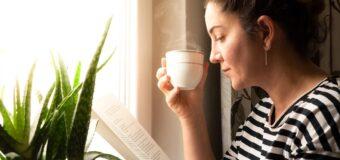 Prueba este remedio casero de Sábila para la  Gastritis y otros problemas gastrointestinales